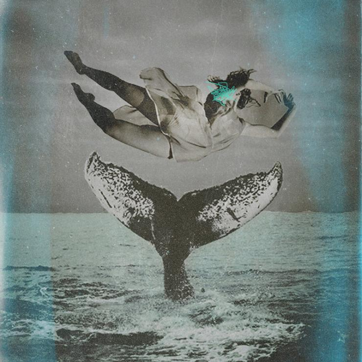 a Person falling into the ocean above a whale tale.